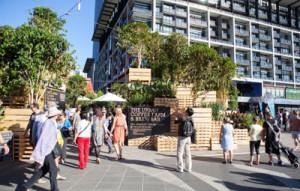Café à Melbourne faite avec des palettes3