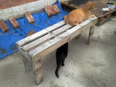 Bauen benchs mit Paletten5