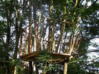 Palette cabane dans les arbres pour nos enfants3