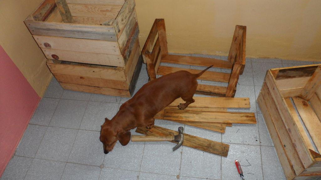 Construire une niche de palettes avec des bo tes de fruitsmeuble en palette meuble en palette - Construire des meubles avec des palettes ...
