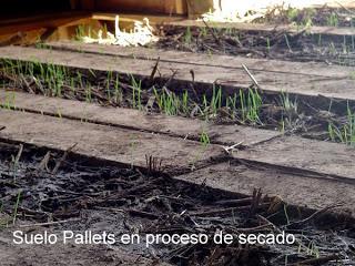 Maison faite avec des palettes au Chili3