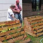 Jardinière escalier pour votre décor de jardin