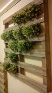 Jardin vertical faite avec des palettes6