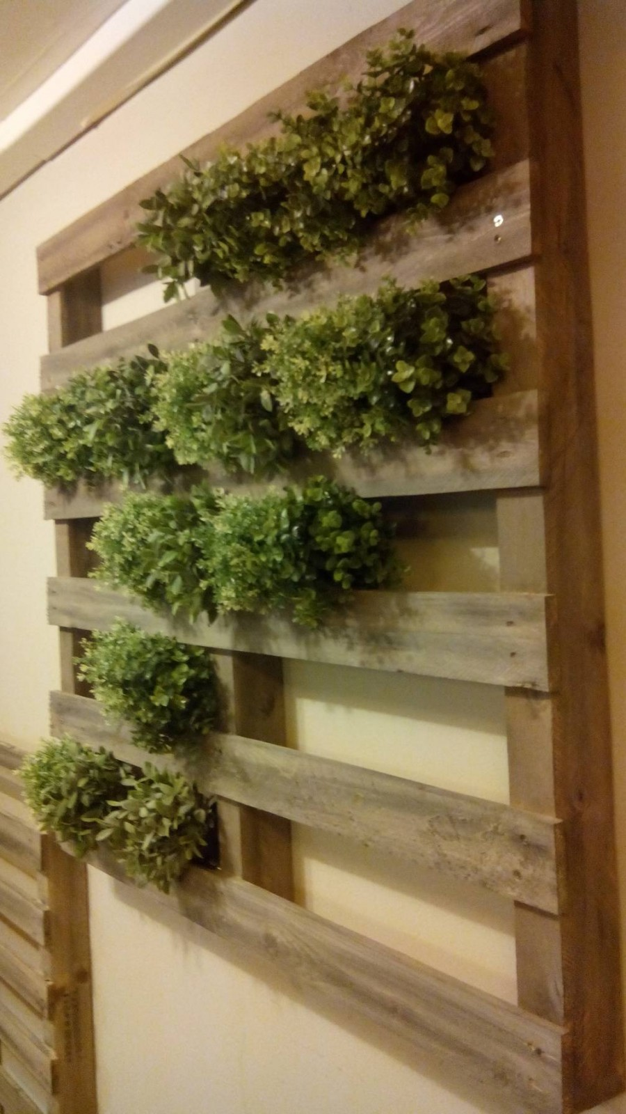 Jardin vertical faite avec des palettesmeuble en palette - Peindre des palettes en bois ...