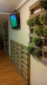 Jardin vertical faite avec des palettes7