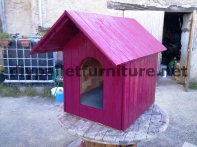 Le chien de la maison de Manou avec des palettes 9