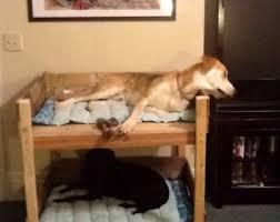 Lits superposés pour chiens à base de palettes! 2