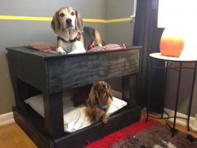 Lits superposés pour chiens à base de palettes! 4