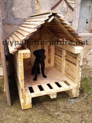 Manou Hund Haus mit Paletten
