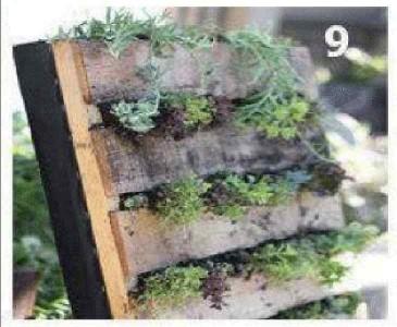 Instructions sur la façon de créer un mur vert avec une seule palette 9