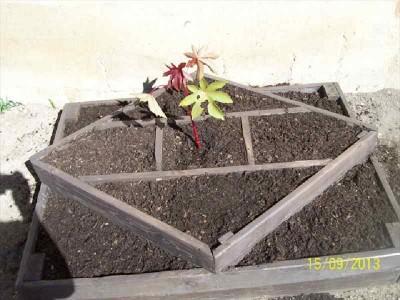 Instructions sur la façon de faire un planteur avec des formes géométriques3