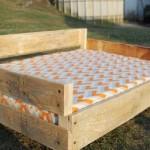 Construire un lit palette pour vos animaux de compagnie