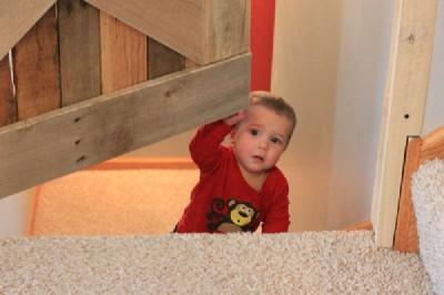 Projette de construire une petite porte et sauvegarder vos bébés1