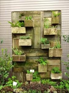 Conception de jardin vertical construit en utilisant des planches de palettes 2
