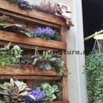 Décor urbain utilisant planteurs de palettes
