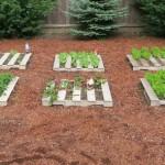 Faire un jardin biologique avec vos palettes