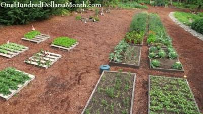 Faire un jardin biologique avec vos palettes 3