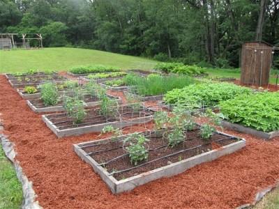 Faire un jardin biologique avec vos palettes 5