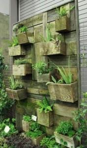 Conception de jardin vertical construit en utilisant des planches de palettes 1