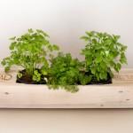 18 exemples de jardinières faites avec des palettes avec une superbe finition