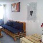 Maison meublée avec des palettes