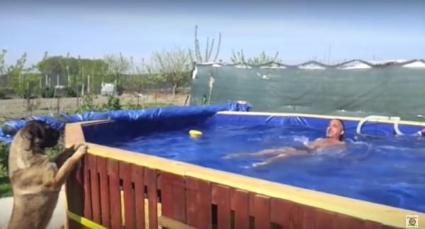 6 piscines construites avec des palettesmeuble en palette - Construire avec des palettes ...