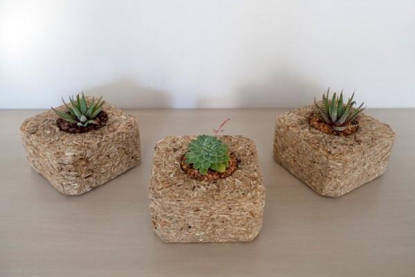 Petits jardinières intérieurs réalisés avec palettes 5