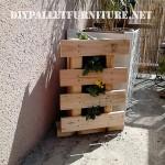 Petite jardinière verticale avec une palette