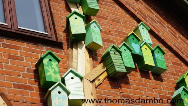 Happy city birds, un projet d'école pour les enfants avec des palettes 3