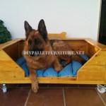 Grand lit de chien avec des palettes