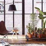 Décoration avec des palettes et des plantes