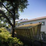 Maison sur le mur en bois