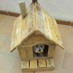 Maison pour les petits chiens avec des palettes